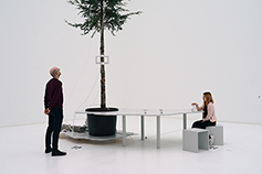 OneTreeID-How to Become a Tree for Another Tree, installation shot, ostock, 2019